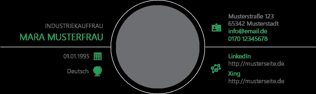 PowerPoint Vorlage: Selbstpräsentation im Kreisformat