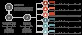 PowerPoint Vorlage: Projektmanagement Rollenverteilung