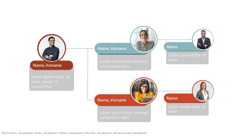 Organigramm mit horizontaler Hierarchie